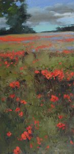 Feild of Poppies 2