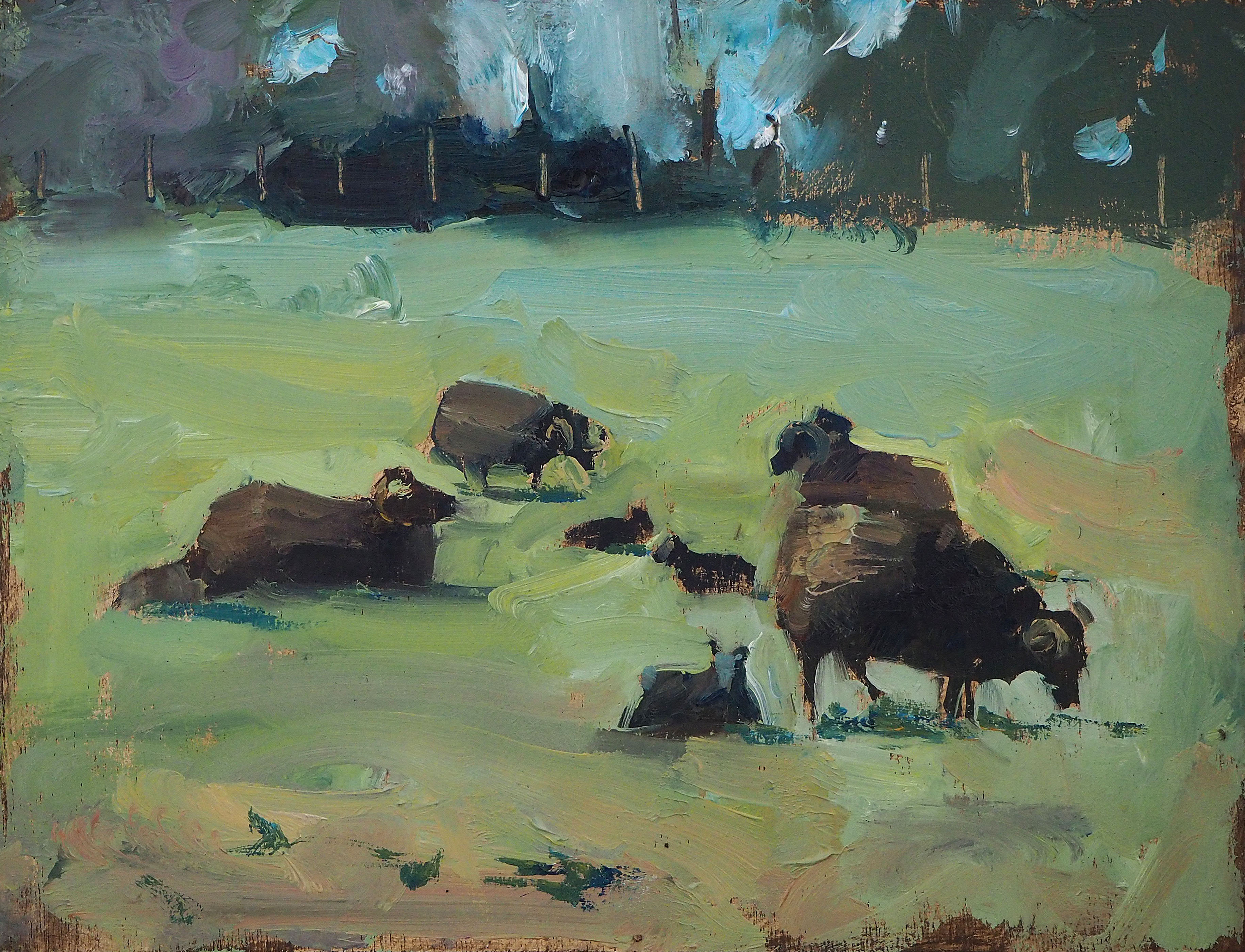 Bill's Hebridean sheep